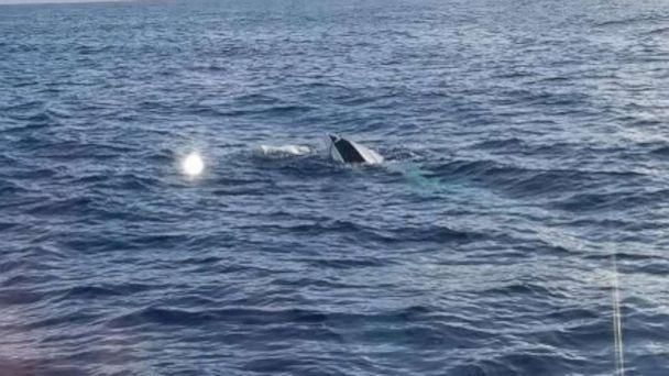 PHOTO: The U.S. Coast Guard continues to search for 6 missing persons near the Fort Pierce area as well as 10 missing persons near the Key West area. (U.S.C.G. Southeast via Twitter)
