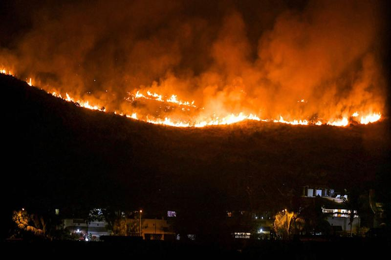 4-Km-Wide Fire in Forest Near Mumbai's Aarey Colony Doused After All-Night Operation