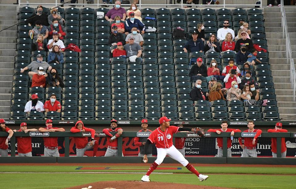 Fans and the Angels bench watch a Reds pitcher throw during Tuesday's game at spring training in Goodyear, Ariz.