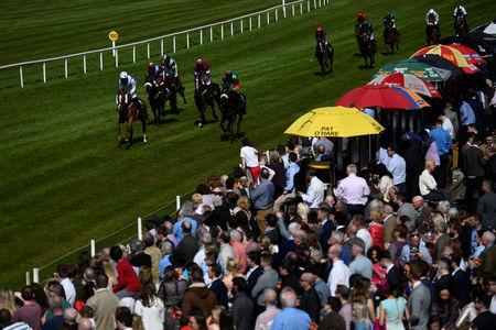 Punters watch a race at Down Royal Racecourse, in Lisburn, Northern Ireland, May 1, 2017. REUTERS/Clodagh Kilcoyne