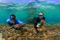 """Workers on Fiji's Coral Coast say tourism has """"all but evaporated"""" because of coronavirus"""