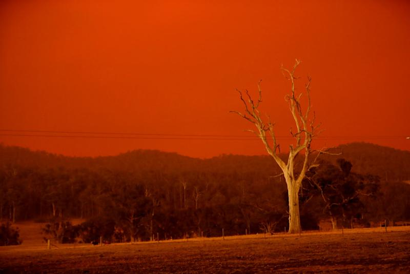 A firefighter has died while battling a bushfire in the Omeo area. Pictured is the sky turning red from the fires in Omeo on January 04, 2020 in Double Bridges, Australia.