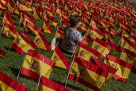 A woman sits among the Spanish flags placed in memory of coronavirus (COVID-19) victims in Madrid, Spain, Sunday, Sept. 27, 2020. An association of families of coronavirus victims has planted what it says are 53,000 small Spanish flags in a Madrid park to honor the dead of the pandemic. (AP Photo/Manu Fernandez)