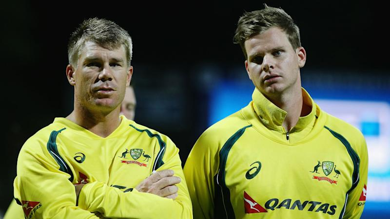 T20 captaincy choice up to Smith, says Warner