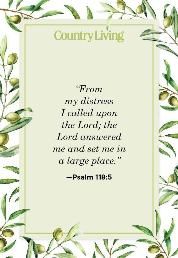 """<p>""""From my distress I called upon the Lord; the Lord answered me and set me in a large place.""""</p>"""