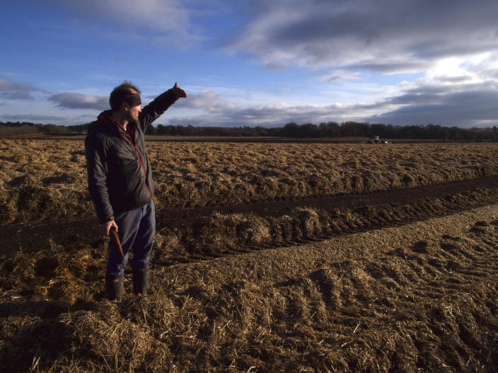 "Johnnie Balfour, the managing director of Balbirnie farm in Cupar, Scotland holds a carrot as they are harvested on Tuesday Dec. 3, 2019. Balfour, who family has operated Balbirnie Farm since 1642, is tired of all the back and forth over independence. He remembers that voters were told ahead of the 2014 vote that this was a ""once in a generation"" decision _ he doesn't want to revisit it just five years later. (AP Photo/Renee Graham)"