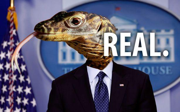 12 Million Americans Believe Lizard People Run Our Country