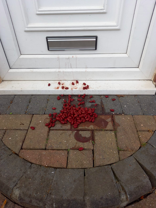 Burglars reportedly use kidney beans to scope out whether or not people are at home. (Reach)