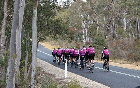 The peloton has the road to themselves. Photo: Carer's Australia