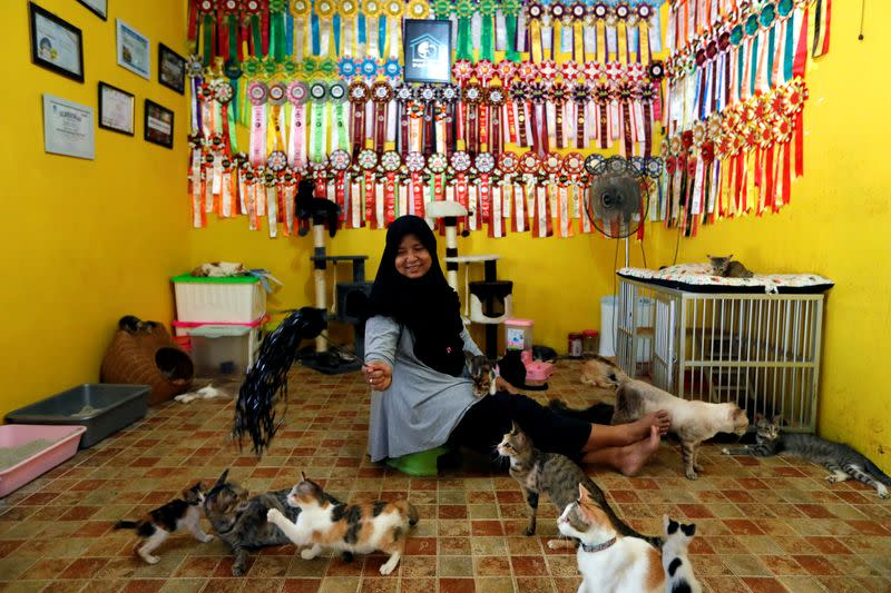 """Dita Agusta, owner of a cat shelter called """"Rumah Kucing Parung"""", plays with her cats in Bogor"""