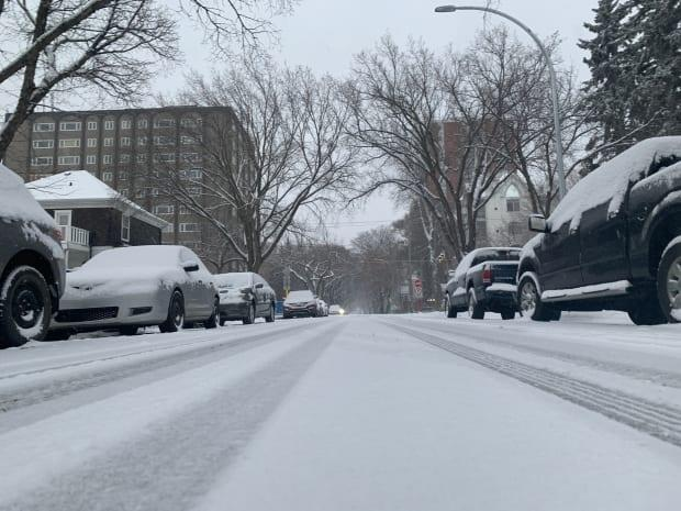 The Edmonton region is likely to get some wet snow Tuesday night that will melt as weekday temperatures remain in the plus range. (Paige Parsons/CBC - image credit)