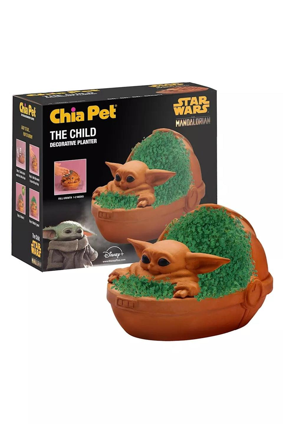 <p>This <span>Baby Yoda Chia Pet</span> ($26) would look so fun in a garden or on their windowsill.</p>