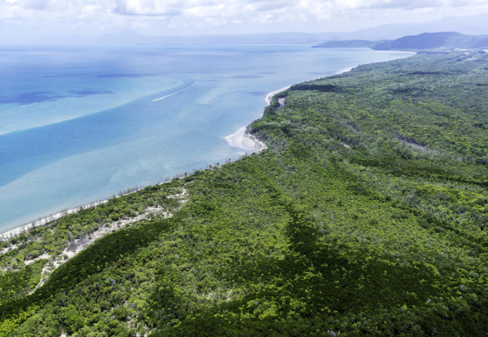 Australia's Daintree Rainforest returned to Indigenous owners
