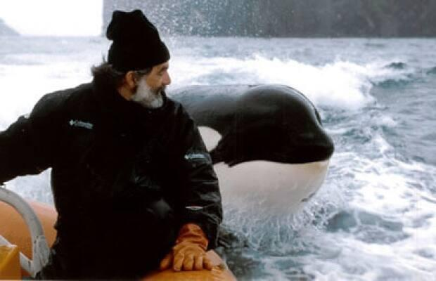Charles Vinick is the executive director of the Whale Sanctuary Project.