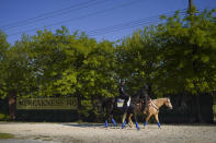 Kentucky Derby winner Medina Spirit, left, is walked to the track at Pimlico Race Course for a morning exercise ahead of the Preakness Stakes horse race, Tuesday, May 11, 2021, in Baltimore. (AP Photo/Julio Cortez)