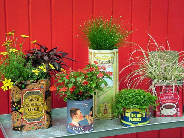 """<div class=""""caption-credit"""">Photo by: Nancy Ondra</div><div class=""""caption-title"""">Yes, You Can</div>Old or reproduction food tins make terrific pots for your favorite annual flowers or houseplants. Group them by a theme, such as candy, coffee or veggies, or mix them up for a quaint and colorful collection."""