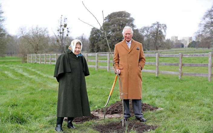 Queen Elizabeth II and The Prince of Wales with the first Jubilee tree in the grounds of Windsor Castle earlier this year, on March 23, 2021 - Chris Jackson/Getty Images