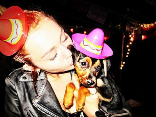 Celebrity photos: Miley Cyrus adopted this dog a week ago, and has been tweeting endless updates – including this cute photo of her and the dog wearing matching hats.