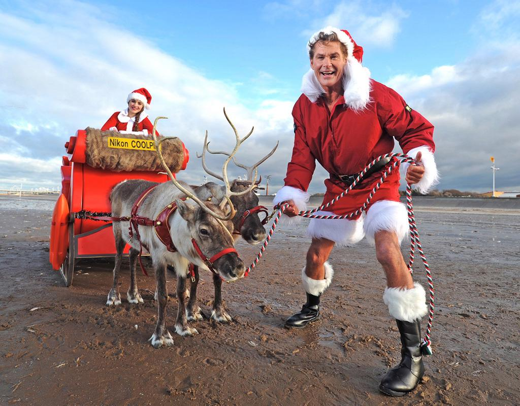 'Baywatch' star David Hasselhoff posed as Santa on a freezing UK beach after he was voted the celebrity Brits most want to have a Christmas snap taken with. As temperatures plunged as low as minus 3 degrees Celsius the actor braved the elements and got into the festive spirit. Wearing a Christmas hat, jacket, boots and shorts 'The Hoff' posed alongside a large sleigh pulled by two reindeer.