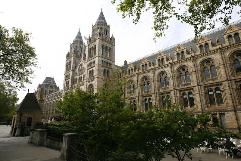 Tracking: The Natural History Museum uses the technology to see which rooms are busiest: PA