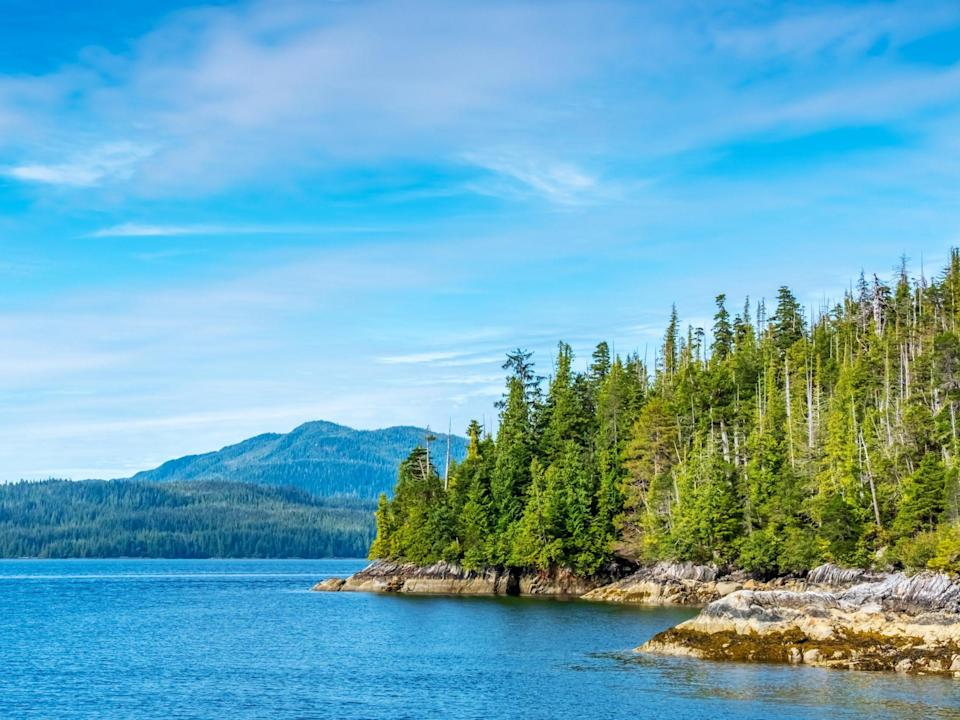Tongass National Forest in Alaska (Getty Images/iStockphoto)