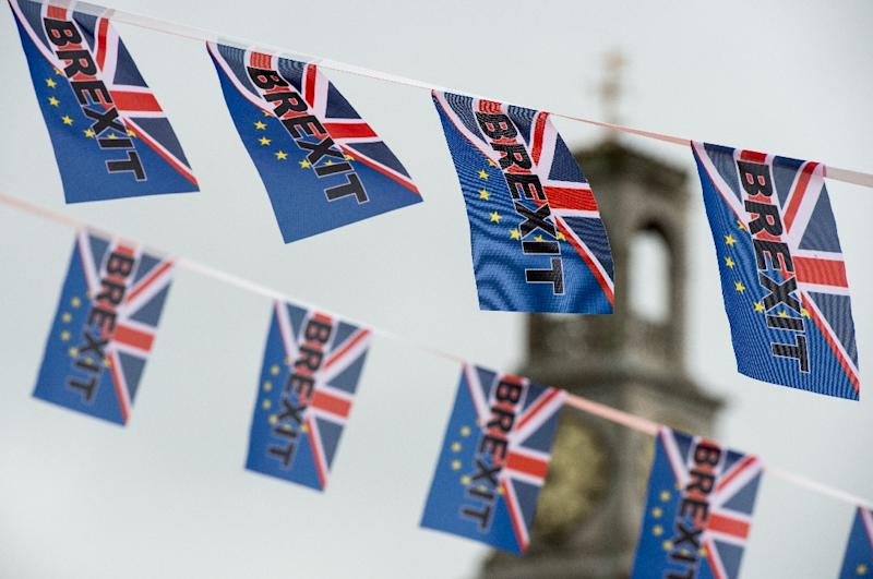 Britain voted to leave the European Union in June 2016 after a bitter campaign in which mass immigration from the rest of the EU was a key issue (AFP Photo/CHRIS J RATCLIFFE)