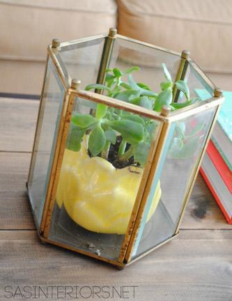 """<div class=""""caption-credit""""> Photo by: SAS Interiors</div><div class=""""caption-title"""">Lantern Turned Planter</div>Planters are always catching my eye, and this one made from an old outdoor lantern is nothing short of awesome! <br> <a href=""""http://www.babble.com/crafts-activities/upcycled-10-crafts-that-you-can-make-from-trash-and-turn-into-treasure/?cmp=ELP bbl lp YahooShine Main  031313  Upcycled10CraftsThatYouCanMakeFromTrashAndTurnIntoTreasure famE   """" rel=""""nofollow noopener"""" target=""""_blank"""" data-ylk=""""slk:Get the tutorial at SAS Interiors"""" class=""""link rapid-noclick-resp""""><i>Get the tutorial at SAS Interiors</i></a>"""