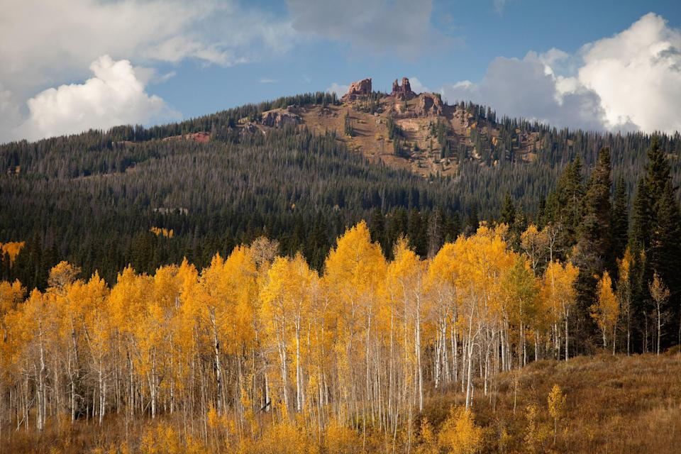 """Because of erosion, the Rabbit Ears rock formation no longer resembles its namesake, but the six-mile out-and-back Rabbit Ears Peak Trail near Steamboat Springs still affords great views of the Continental Divide, <a href=""""https://www.cntraveler.com/gallery/fall-foliage-around-the-world?mbid=synd_yahoo_rss"""" rel=""""nofollow noopener"""" target=""""_blank"""" data-ylk=""""slk:fiery foliage"""" class=""""link rapid-noclick-resp"""">fiery foliage</a> in the valley below, and meadows of wildflowers."""