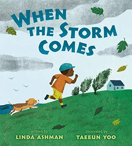 """When the Storm Comes,"" by Linda Ashman and Taeeun Yoo (Amazon / Amazon)"