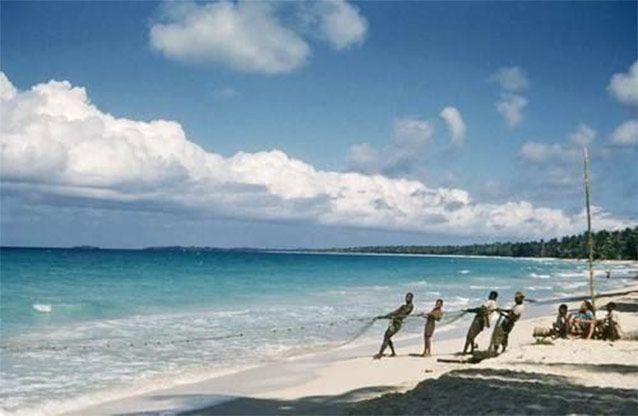A 1956 photo released by the Jamaica Environment Trust shows fishermen pulling a net on the coast of Negril. Source: AP Photo