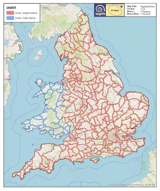Map showing the complete B-Line wildflower network across England and the partially complete network in Wales (Buglife)
