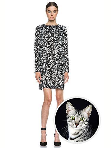 """<div class=""""caption-credit""""> Photo by: forwardforward</div><b>Egyptian Mau Cat</b> <br> Isabel Marant's fresh take on black and white leopard print has us believing she may have been inspired by the feline's domestic relative, the Egyptian Mau cat. Isabel Marant Maybe Leopard Charmeuse Dress, $925; <a href=""""http://www.forwardforward.com/fw/DisplayProduct.jsp?code=ISAB-WD21&d=Womens&AID=10773567&PID=2687457&utm_medium=affiliate&utm_source=cj&utm_content=10773567&utm_campaign=2687457&cvosrc=affiliate.cj.2687457"""" rel=""""nofollow noopener"""" target=""""_blank"""" data-ylk=""""slk:forwardforward.com"""" class=""""link rapid-noclick-resp"""">forwardforward.com</a>. <p> <b><a href=""""http://www.marieclaire.com/health-fitness/healthy-summer-snacks?link=rel&dom=yah_life&src=syn&con=blog_marieclaire&mag=mar"""" rel=""""nofollow noopener"""" target=""""_blank"""" data-ylk=""""slk:Related: 10 Guilt-Free Snacks"""" class=""""link rapid-noclick-resp"""">Related: 10 Guilt-Free Snacks</a> <br> Related: <a href=""""http://www.marieclaire.com/hair-beauty/burgundy-lip-shades-all-skin-tones?link=rel&dom=yah_life&src=syn&con=blog_marieclaire&mag=mar"""" rel=""""nofollow noopener"""" target=""""_blank"""" data-ylk=""""slk:Perfect Lip Colors for Winter"""" class=""""link rapid-noclick-resp"""">Perfect Lip Colors for Winter</a></b> </p>"""