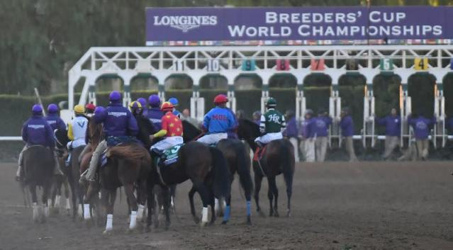 Horse Racing: 36th Breeders Cup World Championship