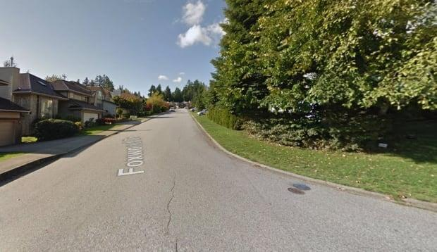 The Port Moody Police Department says a woman's dog could not be saved after a cougar pounced and severely injured the pet while the pair were out walking just after midnight Wednesday. (Google Street View - image credit)