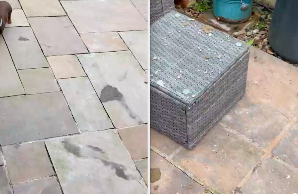 Chris Copley-Hammond accused the builders of throwing cement into his garden. (SWNS)