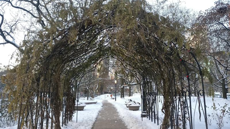 One of my favourite parts of my morning walk is though this archway in St. James Park.  (Photo: Lisa Yeung/HuffPost Canada)