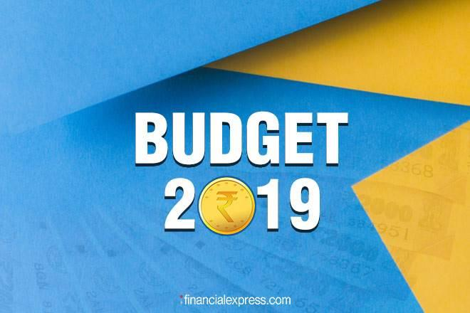 Budget 2019, mutual fund investors, ELSS, Medical Insurance, NPS, Provident Fund
