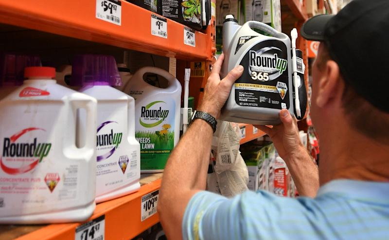 Monsanto has suffered the latest in a series of court defeats for its glyphosate-based weedkiller Roundup, which the company insists is not linked to cancer (AFP Photo/JOSH EDELSON)