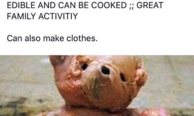 A teddy bear made out of raw chicken was allegedly for sale on Facebook marketplace. (Photo: Best of Nextdoor via Twitter)