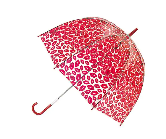 Birdcage Umbrella. Image via The Bay.