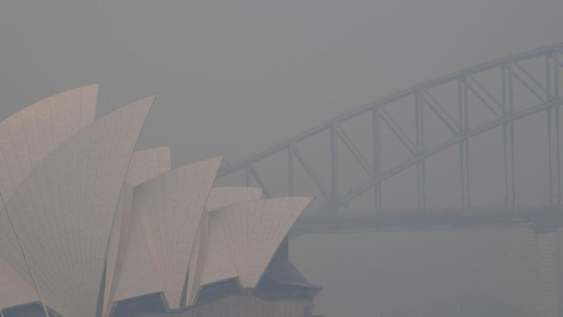 The 50 bushfires burning in NSW have generated a thick smoke haze over Sydney