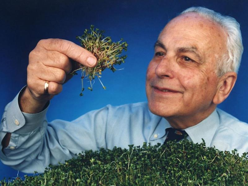 Paul Talalay: Scientist who found in broccoli sprouts an aid to preventing cancer
