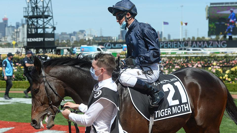 Kerrin McEvoy, pictured here on Tiger Moth at the Melbourne Cup.
