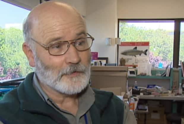 Andrew Hebda, the retired zoology curator at the Nova Scotia Museum of Natural History, says bats play an important role in Nova Scotia's ecosystem.
