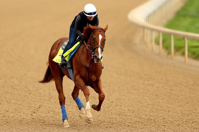 LOUISVILLE, KY - APRIL 25: Chitu is riden by Dana Barnes during the morning exercise session in preparation for the 140th Kentucky Derby at Churchill Downs on April 25, 2014 in Louisville, Kentucky. (Photo by Matthew Stockman/Getty Images)
