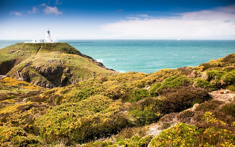 Strumble Head is a lonely, wind-battered headland, with expansive sea views and gulls swooping over the lighthouse - JoeDunckley