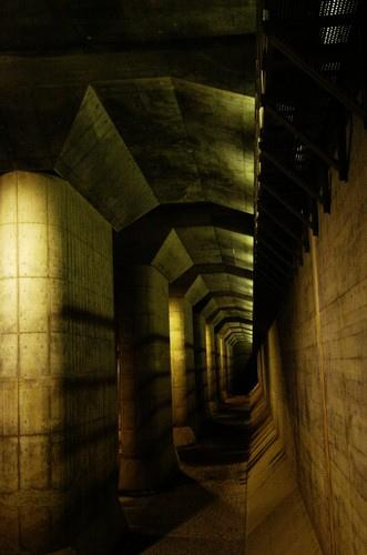 "The Edogawa flood prevention system's main buffer tank, north of Tokyo. The size of this underground cathedral is 177x78x28m.<br> <br> (Photo courtesy of <a target=""_blank"" href=""http://www.flickr.com/photos/takahara/3559042261/in/pool-1735800@N22/"">Damien Douxchamps</a> © All rights reserved 2009)"