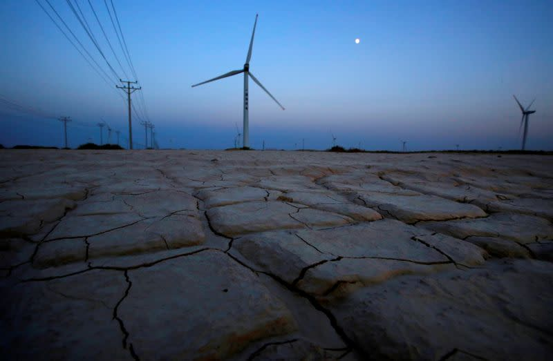FILE PHOTO: Cracked earth marks a dried-up area near a wind turbine used to generate electricity at a wind farm in Guazhou, 950km (590 miles) northwest of Lanzhou, Gansu Province