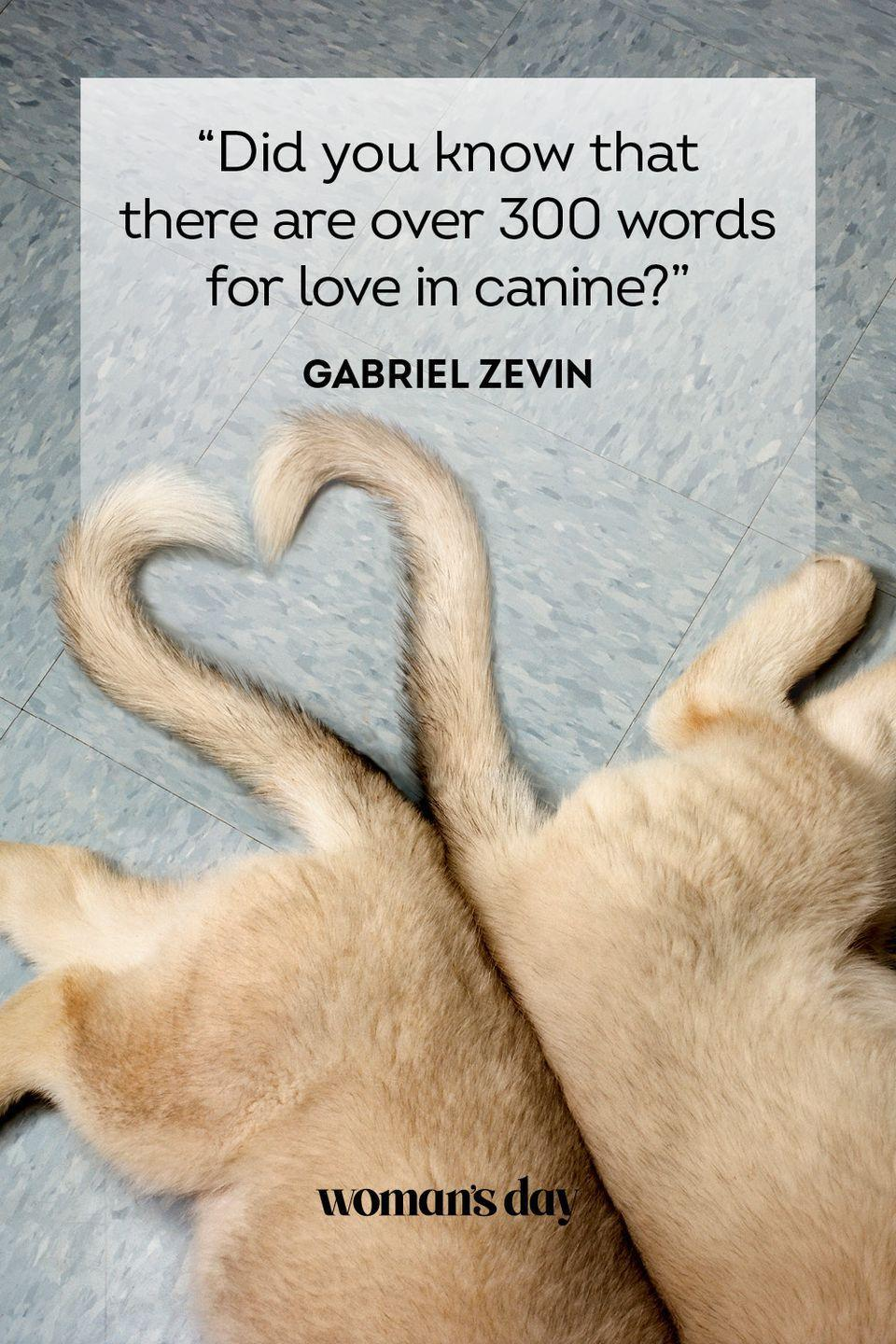 """<p>""""Did you know that there are over 300 words for love in canine?""""</p>"""