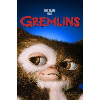 """<p><a class=""""body-btn-link"""" href=""""https://www.amazon.com/Gremlins-Zach-Galligan/dp/B00KQ9ZW4O?tag=syn-yahoo-20&ascsubtag=%5Bartid%7C10070.g.28120916%5Bsrc%7Cyahoo-us"""" target=""""_blank"""">WATCH NOW</a></p><p>You could use this movie to teach your kids responsibility surrounding their pets. In <em>Gremlins</em>, a boy breaks the three magical rules to taking care of his cute new pet, unleashing horror in his town. </p>"""